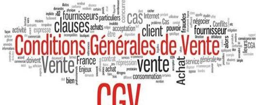 Conditions générales de vente – Mentions Légales: Ne les négligez pas!