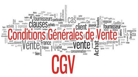cgv, conditions générales de vente conditions générales de vente Conditions générales de vente – Mentions Légales: Ne les négligez pas! 106